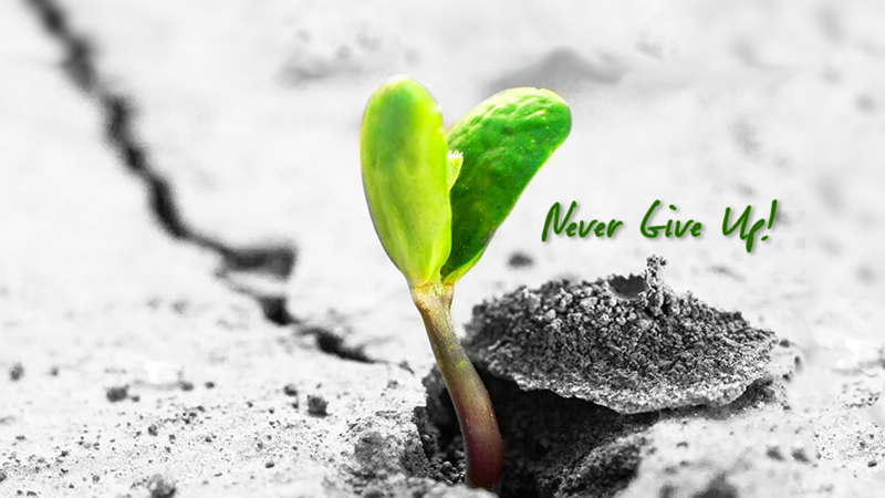 Expectations - never give up